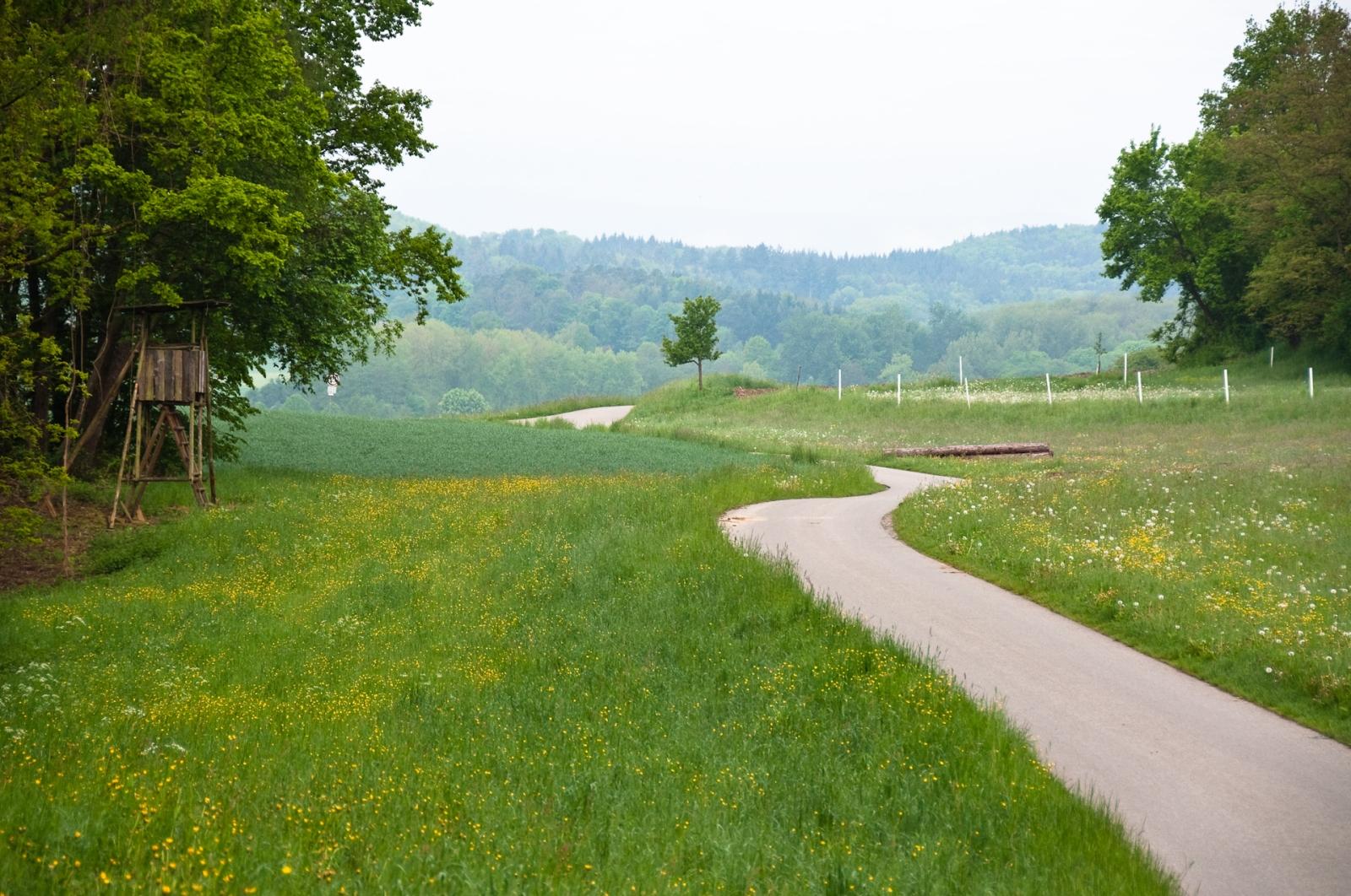 väg winding road bodensjön bodensee lake constance