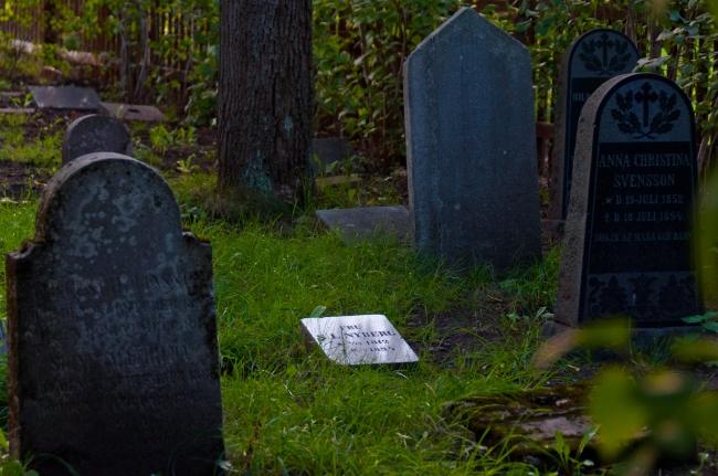 Kolerakyrkogården Gullmarsplan_001
