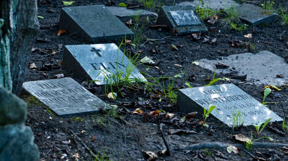 Kolerakyrkogården Gullmarsplan_003