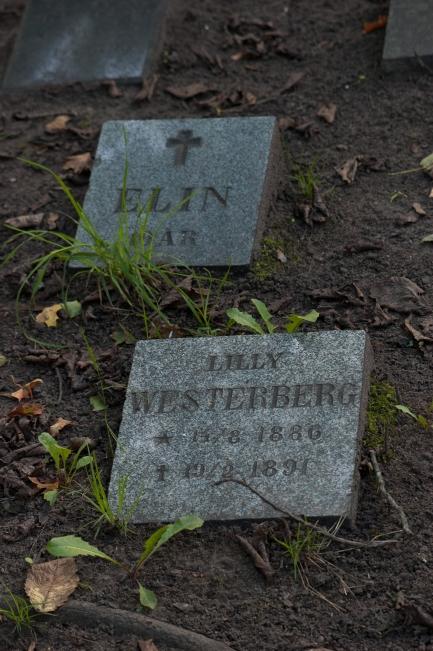 Kolerakyrkogården Gullmarsplan_004