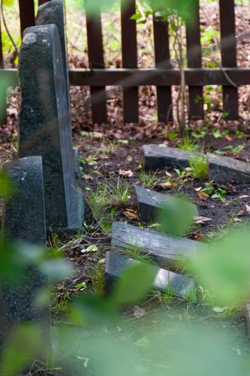 Kolerakyrkogården Gullmarsplan_013