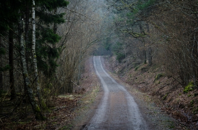 Gladöskogens naturreservat