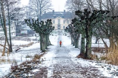 Oskarp fotograf