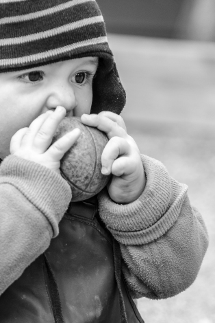 Den minste åt bouleklot