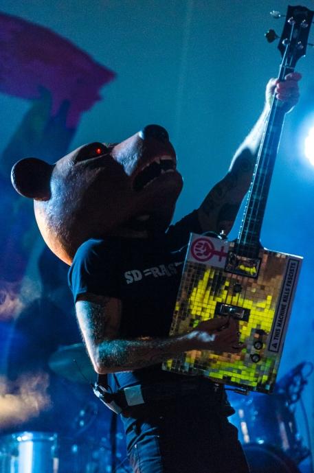 Teddybears, SD = RASISTER