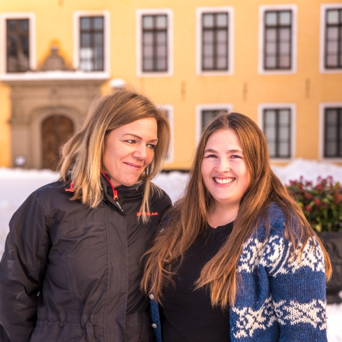 Färingar framför Ulriksdals slott
