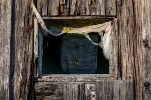 Trötta gardiner