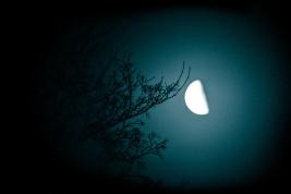 moon_dhk0417