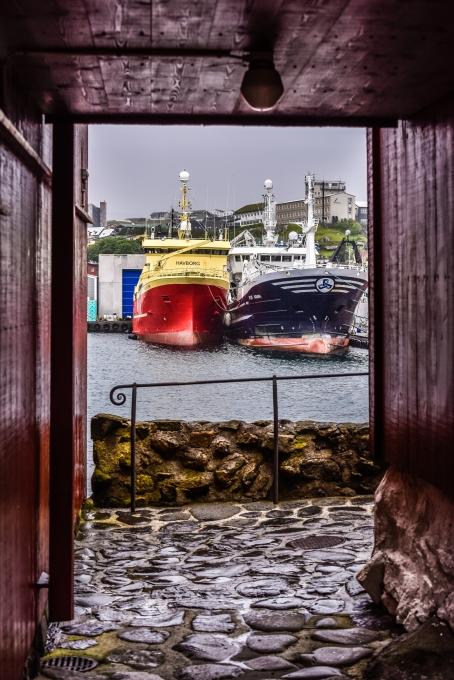 Faroe_islands_july_2017_DHK2713