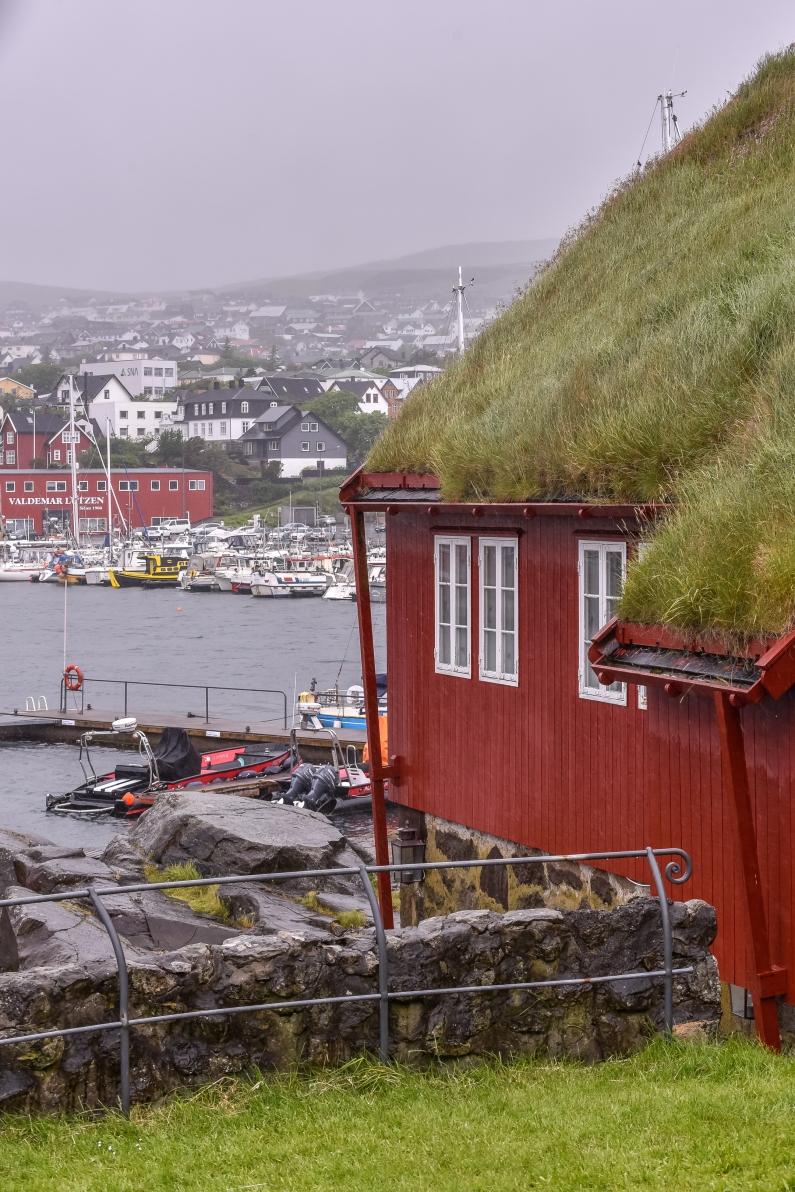 Faroe_islands_july_2017_DHK2717