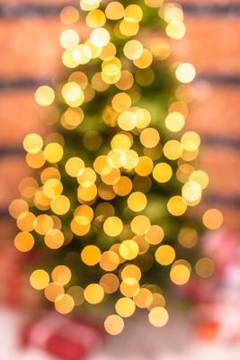 Julgran, folktandvården Årsta