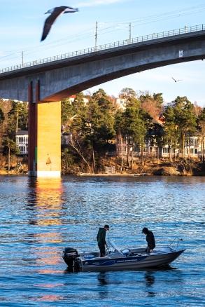 Spårvägsbron från Alvik Strand