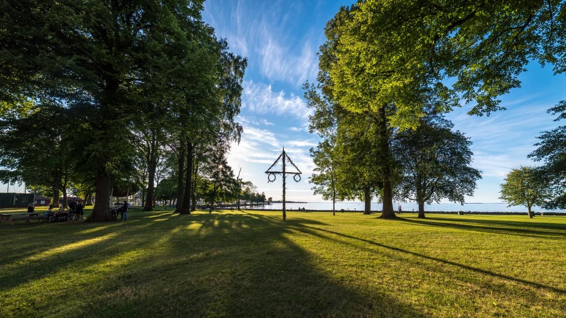 Midsommarstång i slottsparken
